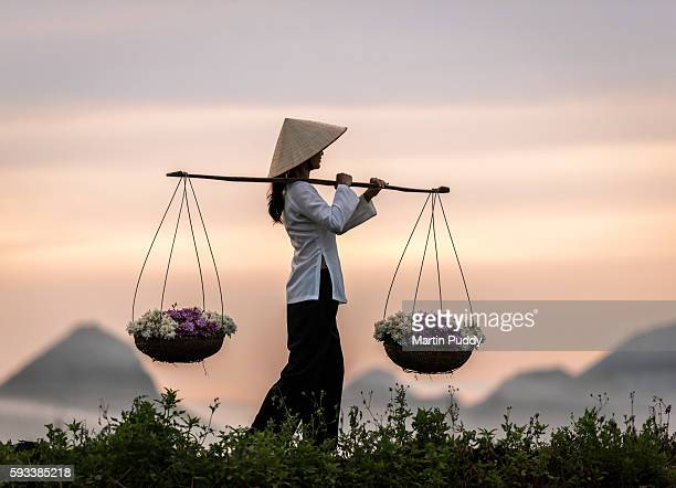Young woman carrying baskets of flowers, Perfume Pagoda, Hanoi, Vietnam