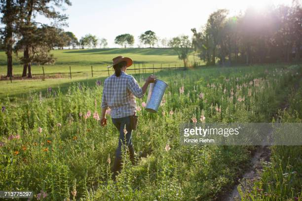 young woman carrying bucket in snapdragons (antirrhinum) flower farm field - gainesville florida stock photos and pictures