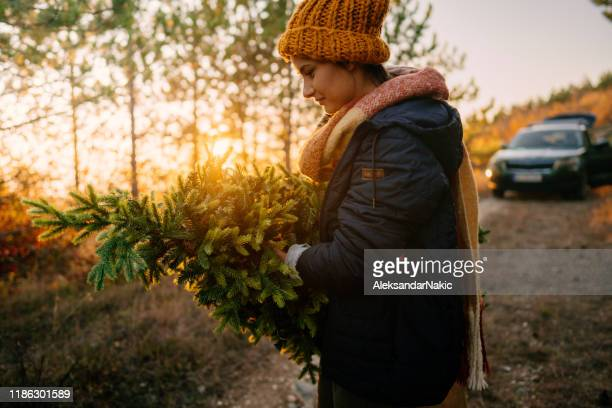 young woman carrying home her christmas tree - christmas tree farm stock pictures, royalty-free photos & images