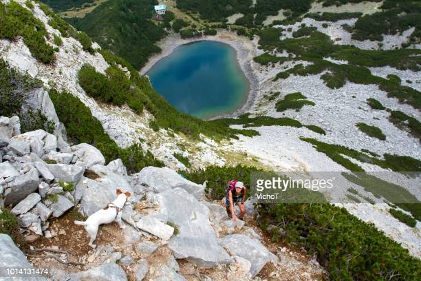 young woman climbing a mountain with her dog - pirin mountains stock pictures, royalty-free photos & images