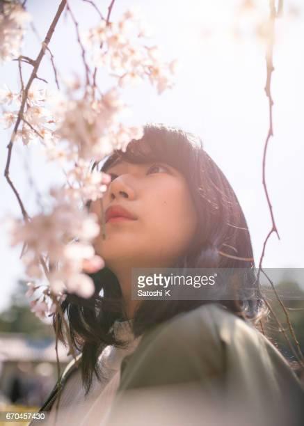 密接に桜の花を見て若い女性