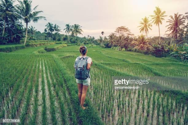 jovem mulher, contemplando o terraço de arroz, ubud - bali - bali - fotografias e filmes do acervo