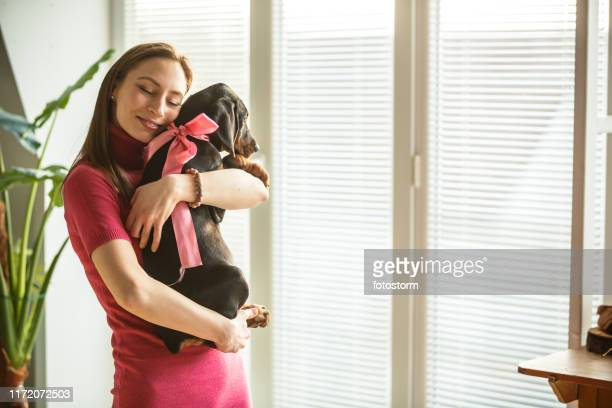 young woman cuddling her adorable doberman puppy - dog knotted in woman stock pictures, royalty-free photos & images