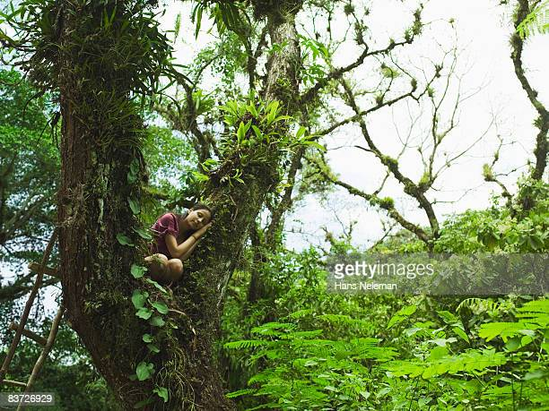 Young woman curled up asleep in majestic tree