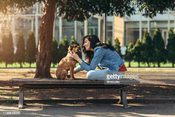 young woman day out with her dog - pet adoption stock pictures, royalty-free photos & images