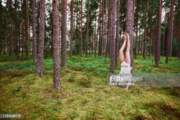 young woman doing headstand against tree in forest - broek stockfoto's en -beelden