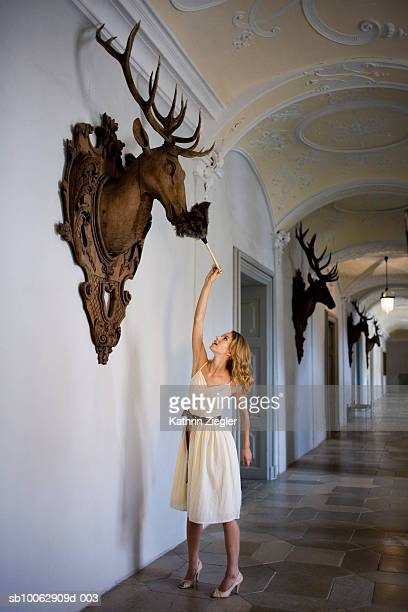 Young woman dusting wooden deer head