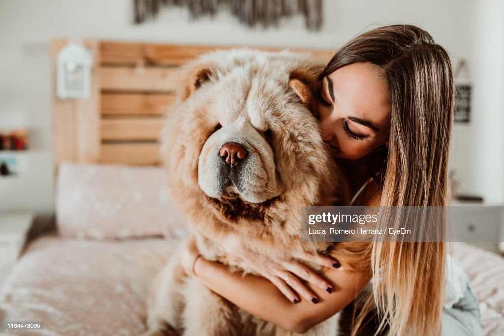 Young Woman Embracing Dog On Bed At Home : Stockfoto