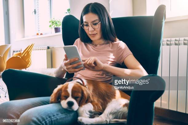 young woman enjoying afternoon at home with her dog and using her smartphone - cavalier king charles spaniel stock pictures, royalty-free photos & images