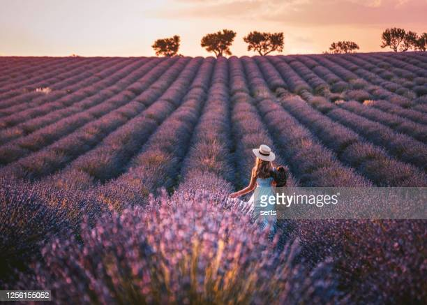 young woman enjoying lavender field in provence, france - france stock pictures, royalty-free photos & images