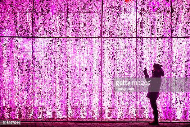 Young woman enjoying LED illuminated wall