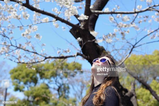 young woman enjoying the cherry blossoms - yoyogi tokyo stock photos and pictures