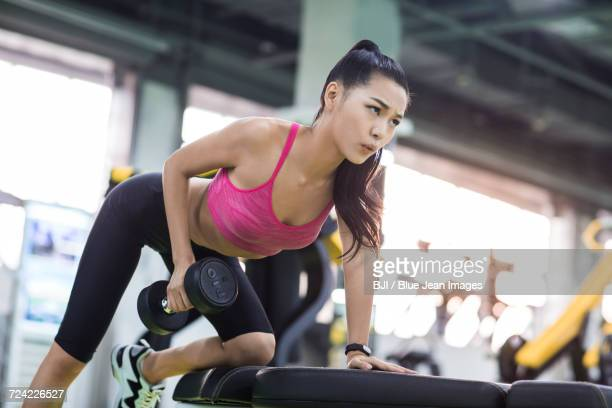 young woman exercising at gym - asian female bodybuilder stock photos and pictures