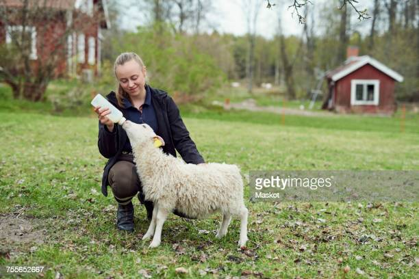 Young woman feeding milk from bottle to lamb on field