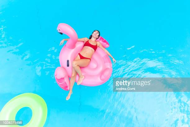young woman floating in a swimming pool on a pink flamingo float - standing water stock pictures, royalty-free photos & images