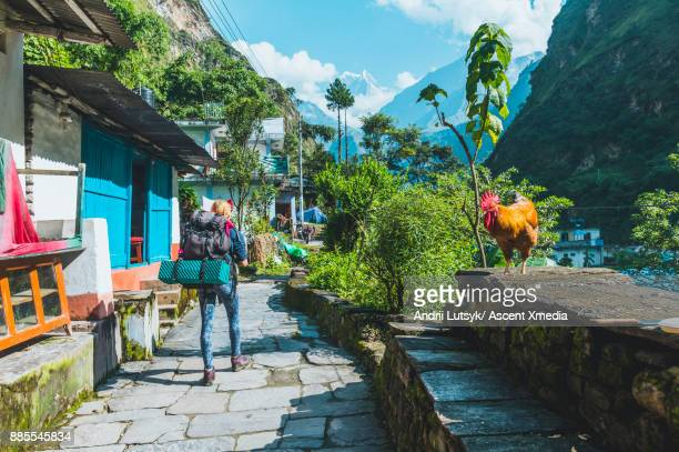 young woman follows pathway through village - annapurna conservation area stock photos and pictures