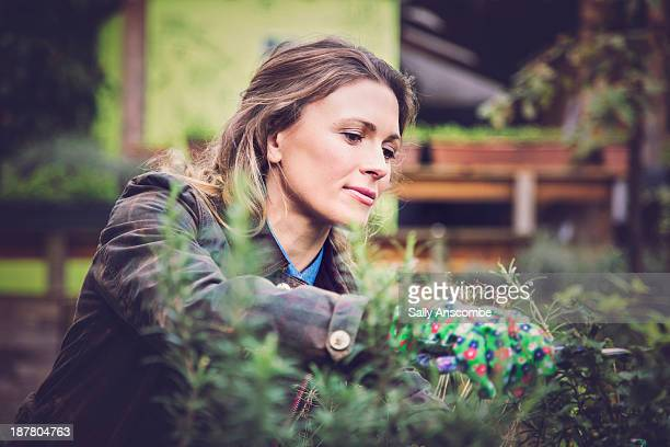 young woman gardening - urban garden stock photos and pictures