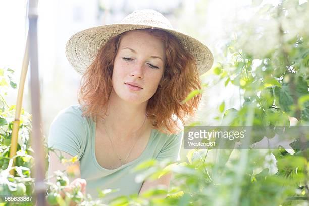 Young woman gardening, urban gardening