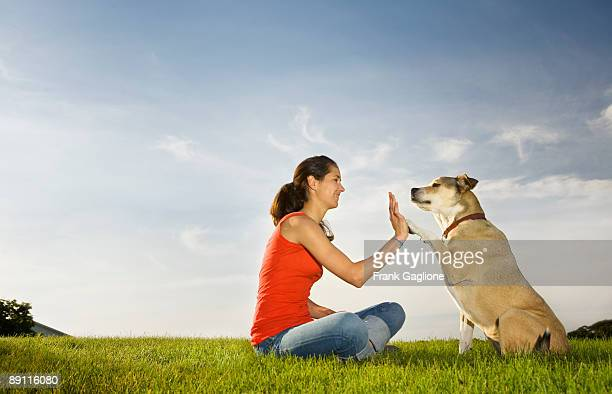 young woman giving her dog a high five. - 動物芸 ストックフォトと画像