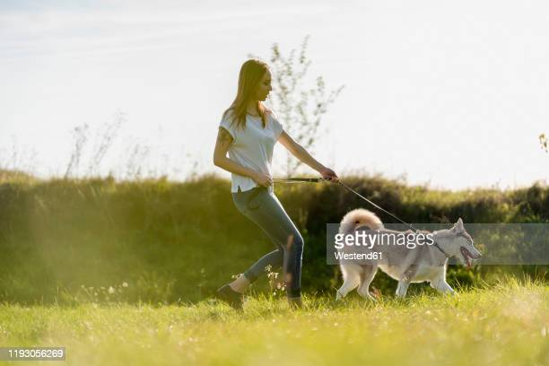 young woman going walkies with her dog in nature - 引く ストックフォトと画像