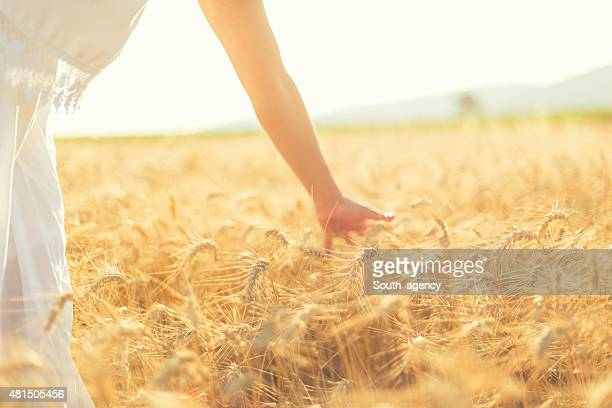 Young woman hand in field on sunset