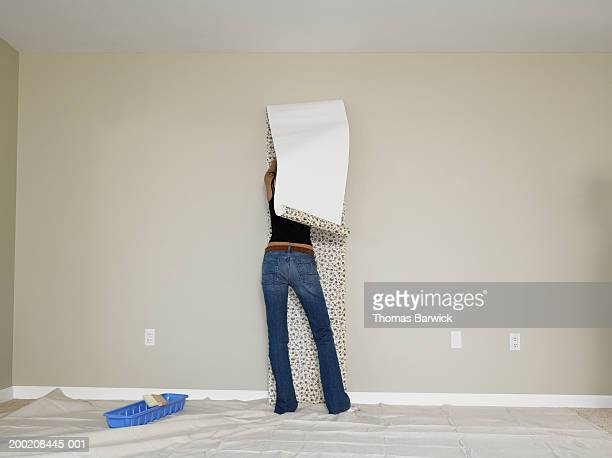 young woman hanging wallpaper, rear view - bricolage humour photos et images de collection