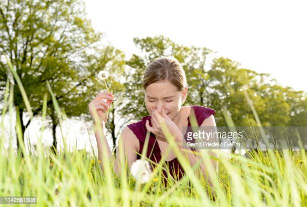 young woman having allergic reaction holding dandelion sitting against trees - graspflanze stock-fotos und bilder