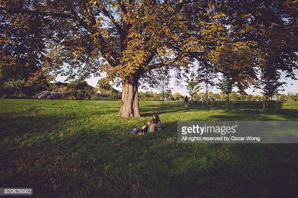 Young woman having lunch under tree in park