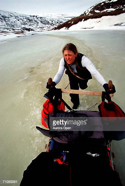 young woman helps push dogsled along thawing river, baffin island, nunavut, canada. - バフィン島 ストックフォトと画像