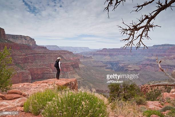 young woman hiker standing on the canyon rim - flagstaff arizona stock pictures, royalty-free photos & images