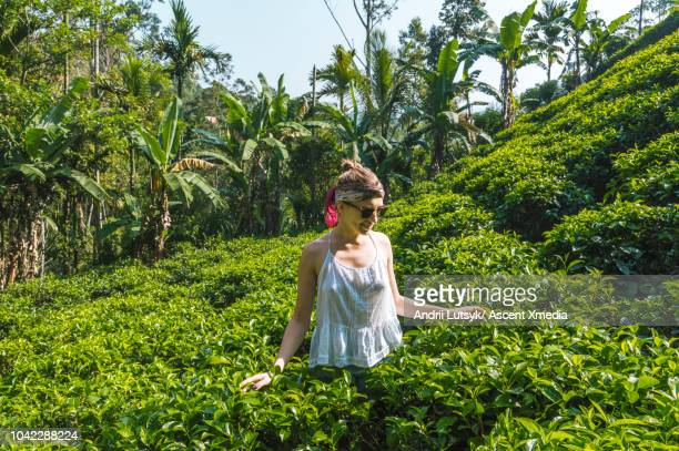 young woman hikes through hilly tea plantation - sleeveless top stock pictures, royalty-free photos & images