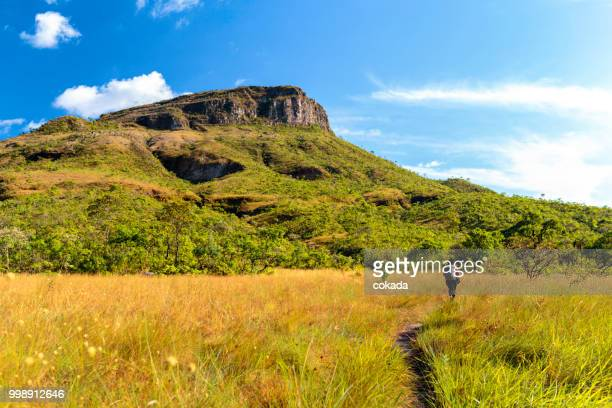 young woman hiking at chapada dos veadeiros - goias stock pictures, royalty-free photos & images