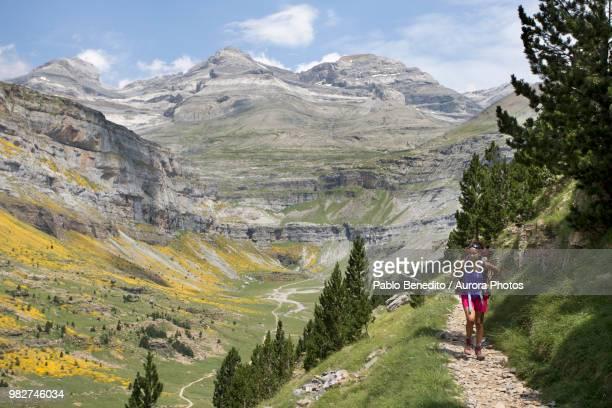 young woman hiking in ordesa y monte perdido national park in pyrenees, huesca, aragon, spain - pyreneeën stockfoto's en -beelden