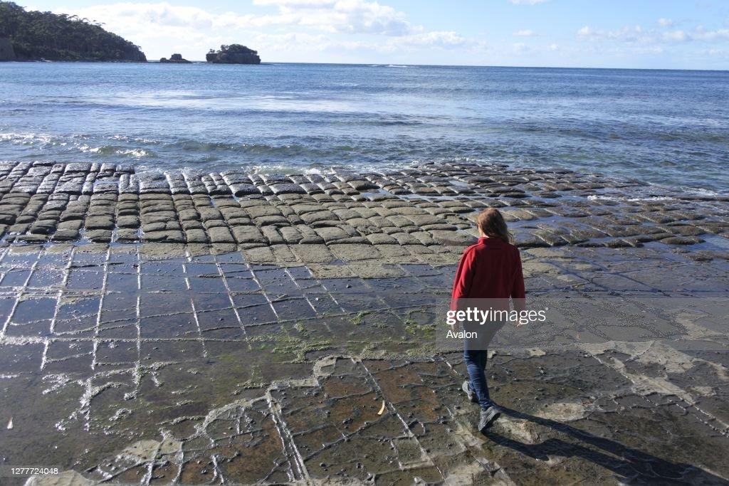 Young woman hiking over the Tessellated Pavement in Tasman Peninsula Tasmania Australia. : News Photo