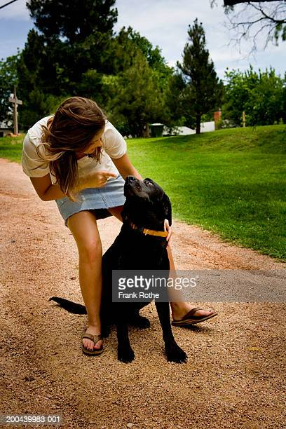 young woman holding black labrador outdoors - bending over in skirt stock pictures, royalty-free photos & images