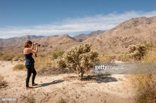 Young woman holding camera near Palm Springs California