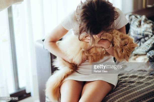 young woman holding hairy cat on sofa at home - atividades de fim de semana imagens e fotografias de stock