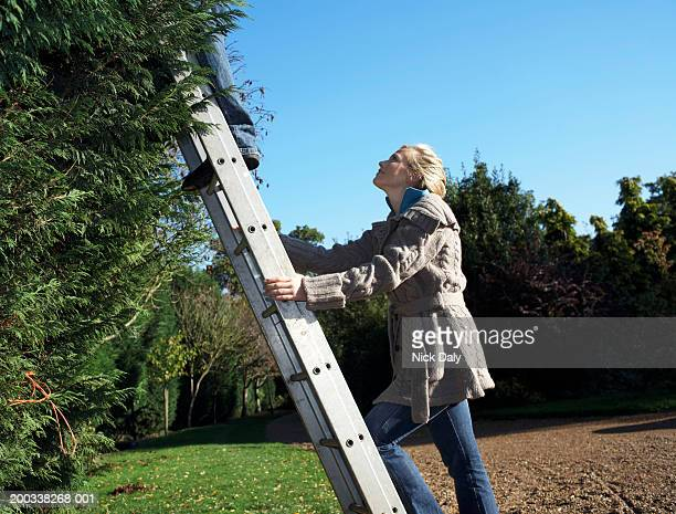 young woman holding ladder, looking up at man - ladder stock pictures, royalty-free photos & images