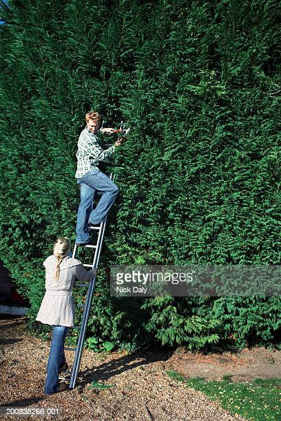Young woman holding ladder, man pruning hedge