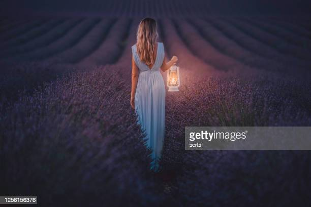 夜の間にラベンダー畑でランタンを持っている若い女性 - lavender color ストックフォトと画像