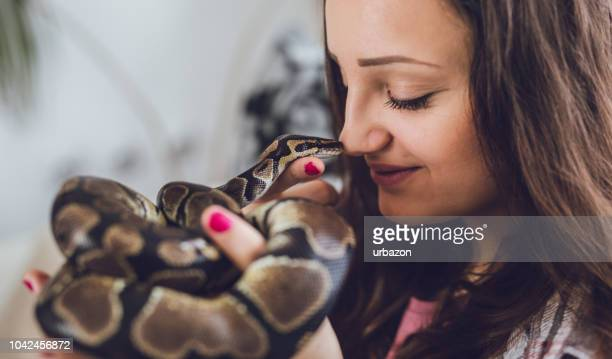 young woman holding snake - snake stock photos and pictures