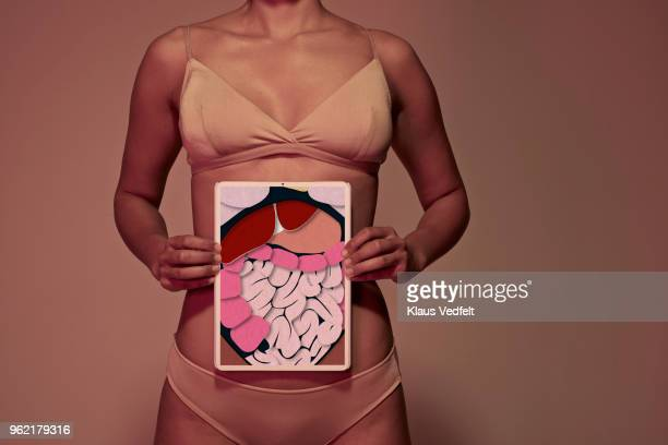 young woman holding tablet in front of stomach to show intestines - stomaco umano organo interno foto e immagini stock