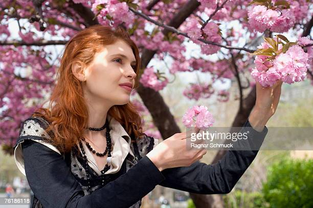 A young woman holding the branch of a cherry blossom