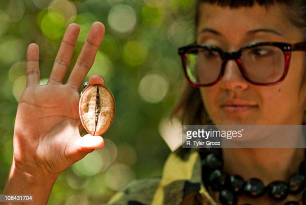 A young woman holds the seed to a relative of the African Baobab Tree.