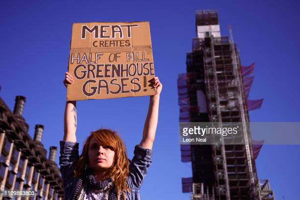 A young woman holds up a placard during a climate protest in Parliament Square on February 15 2019 in London United Kingdom Thousands of UK pupils...