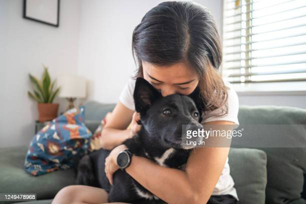 young woman hugging dog and on living room sofa - 犬 ストックフォトと画像
