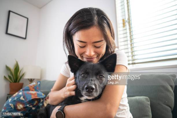 young woman hugging dog and on living room sofa - domestic animals stock pictures, royalty-free photos & images