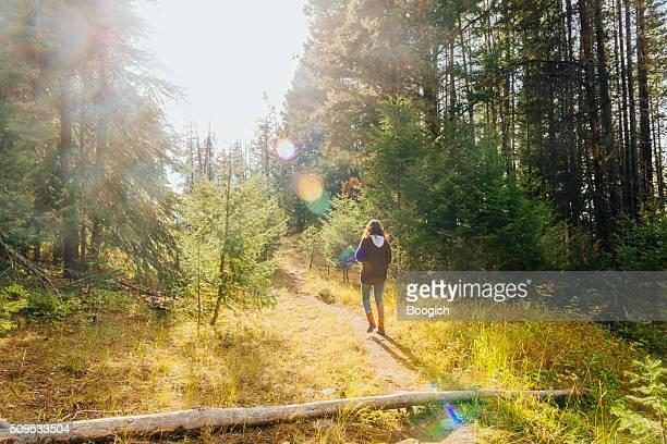 Junge Frau in der 20er Wandern in Montana Forest