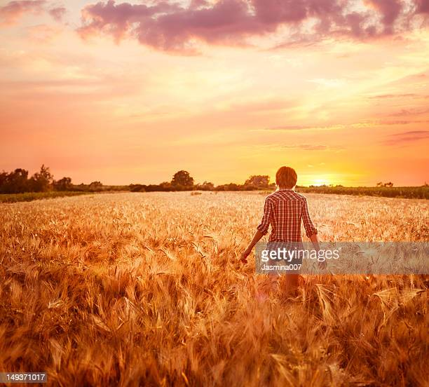 Young woman in a field at sunset