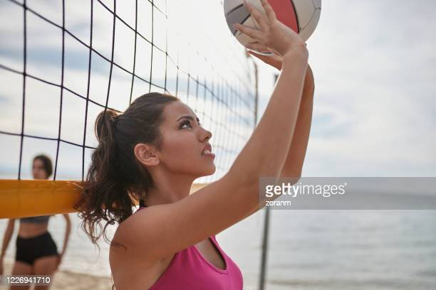 young woman in bikini by the net setting the volleyball for team player - passing sport imagens e fotografias de stock
